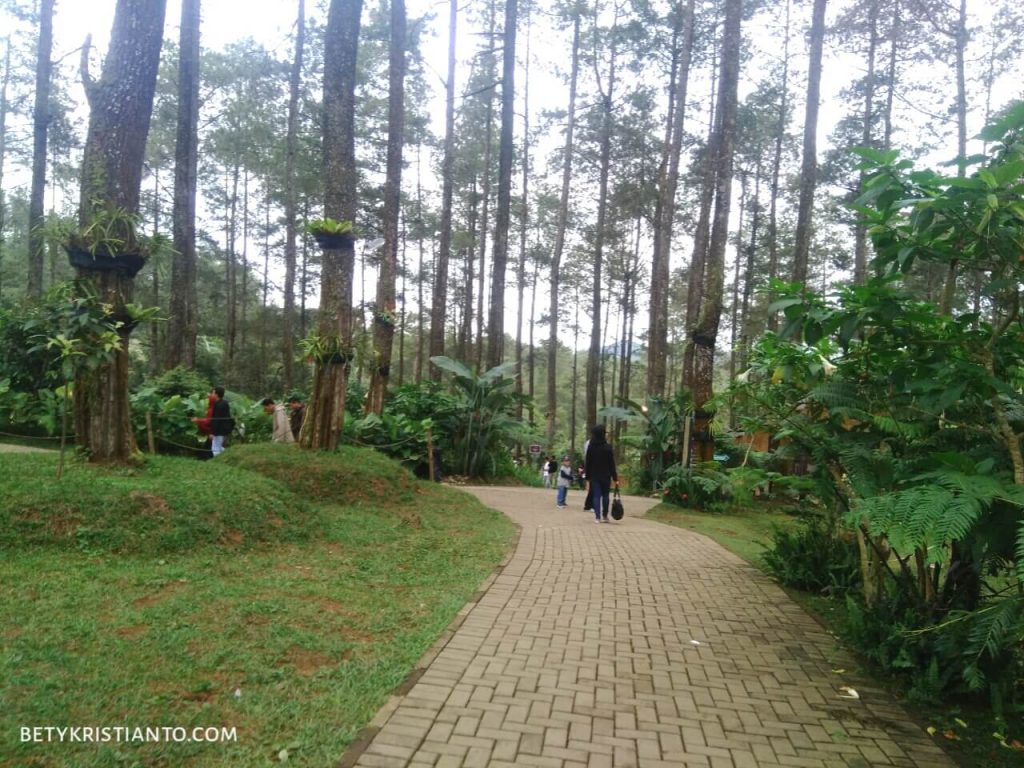 Orchid forest Cikole Lembang Bety Kristianto