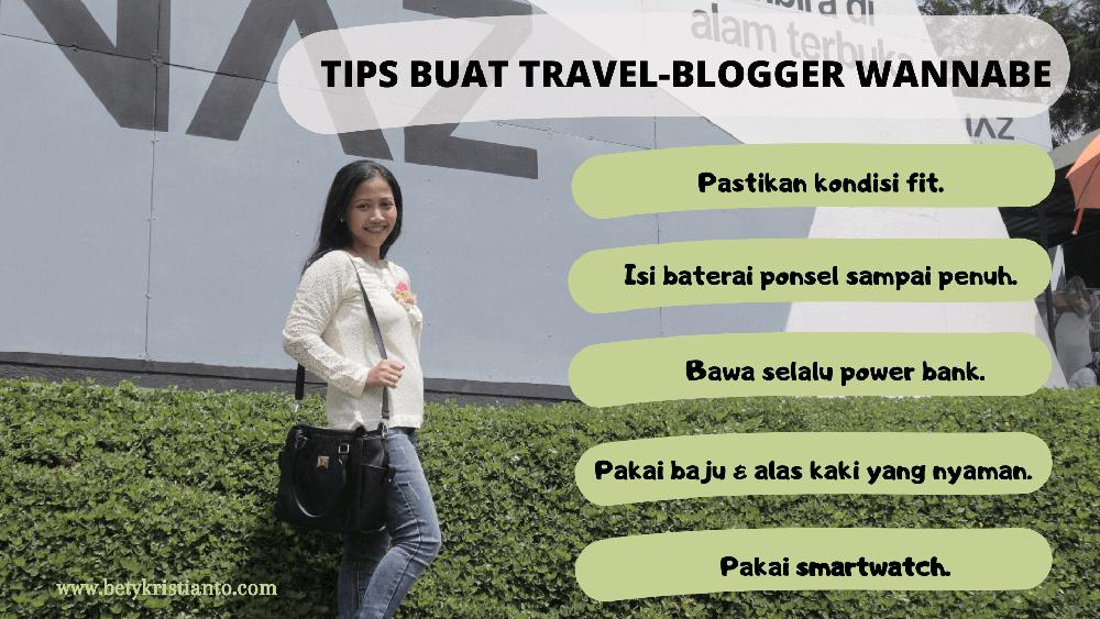tips travel blogger