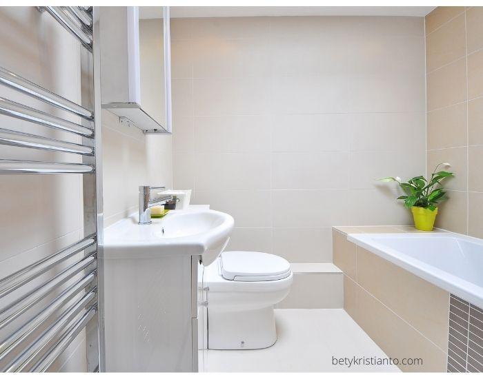 tips memilih desain toilet